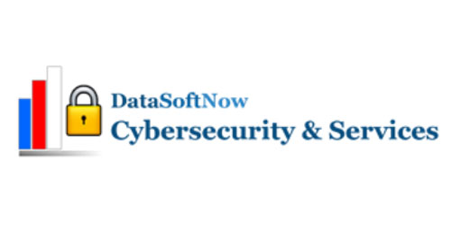 DataSoftNow Logo